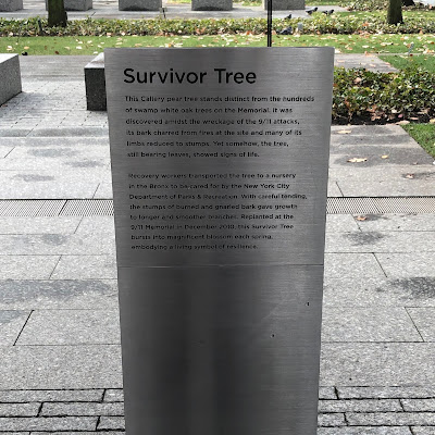 Survivor Tree at Ground Zero
