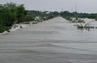 लूणी नदी