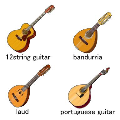 12本の弦を持つ弦楽器/12弦