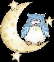 coruja na lua