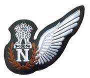 IAF Navigator's Badge