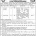 Tehsil Municipal Administration Abbottabad Jobs