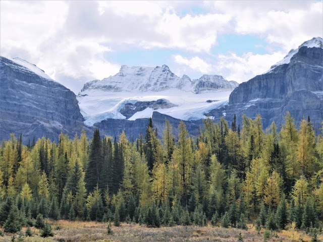 view from hike to Larch Valley