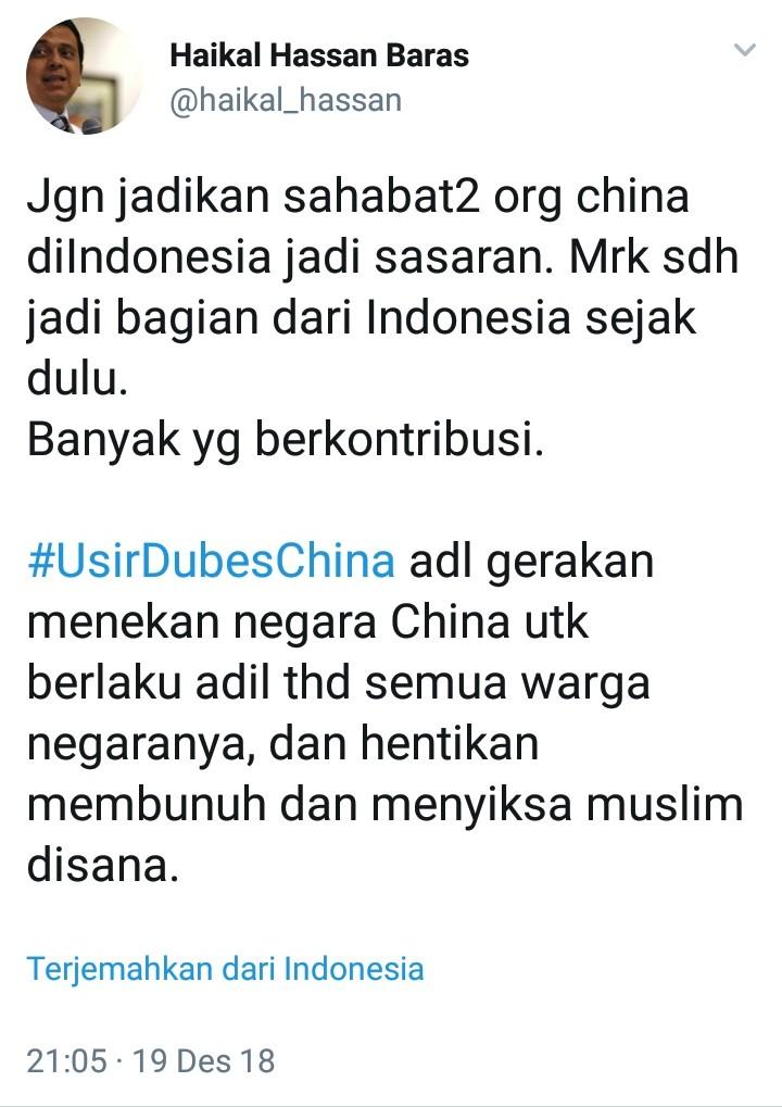 Banyak yang Salah Paham, Ini Penjelasan Ust Haikal Hassan Soal Tagar #UsirDubesChina