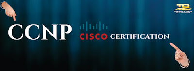 Best CCNA Training In Noida
