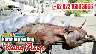Tips Membuat Kambing Guling Enak, kambing guling enak, kambing guling,