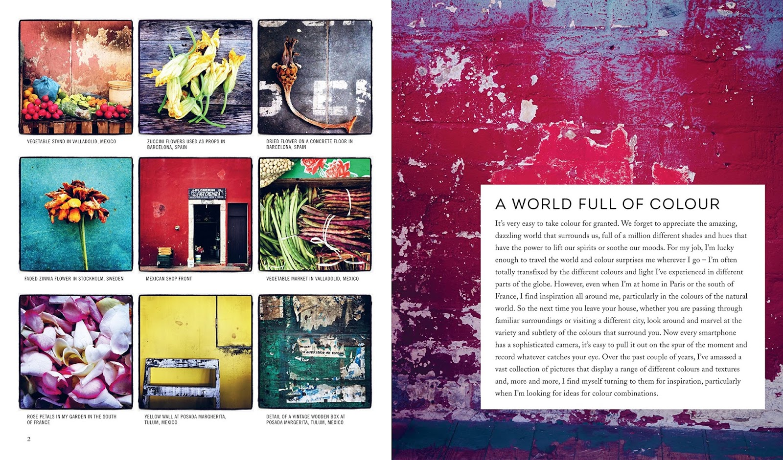 book color me beautiful : In This Book His Third He Reveals His Way Of Seeing Color Navigating Us With Beautiful Photography By Debi Treloar Through Palettes Pale To Dark