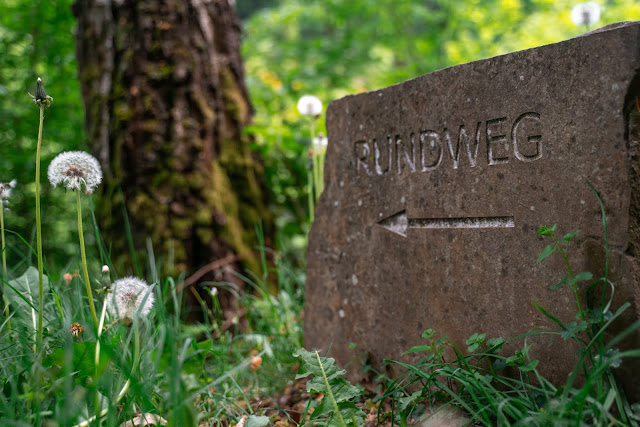 Pulvermühlenweg – Windeck | Erlebniswege Sieg | Wandern Naturregion-Sieg 20