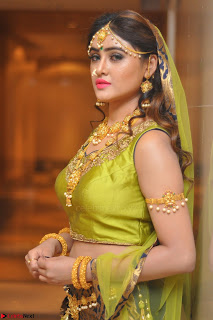 Sony Charishta in Green Choli Ghagra Transparent Chunni Ethnic Wear March 2017 024.JPG