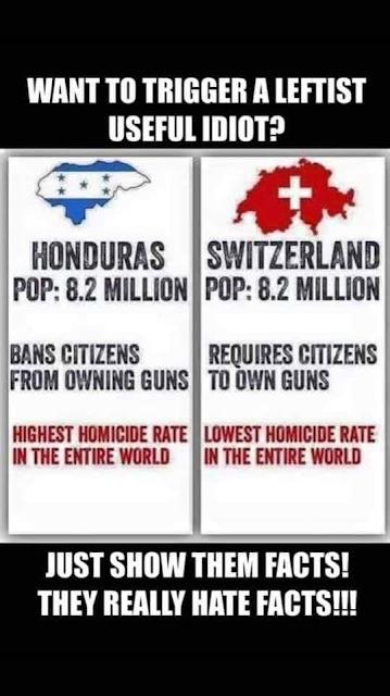 GUNS%2B%25281%2529.png