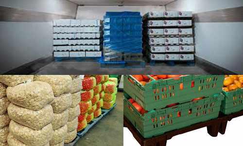 5 Alasan Menggunakan Pallet Plastik di Industri Makanan