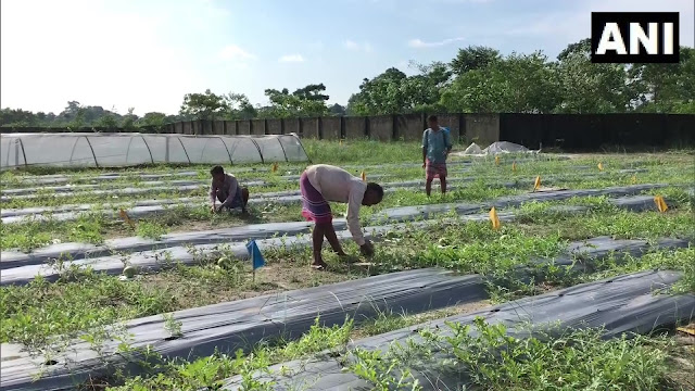 Entrepreneur creates job opportunity in organic farming for returning migrants