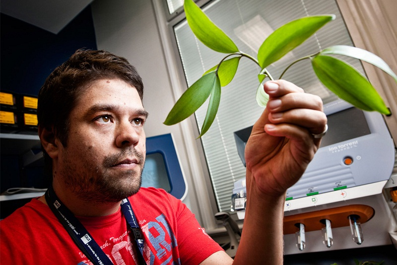Ngành Khoa học môi trường làm gì? Triển vọng nghề nghiệp ra sao?