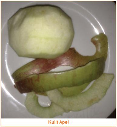 Kandungan dan Manfaat Kulit Apel - Bahan Pangan Hasil Samping Apel yaitu Kulit Apel