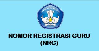 NRG PPG Dalam Jabatan Belum Terbit
