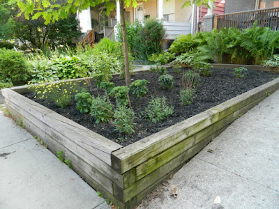Leslieville Toronto Front Garden Weeding and Makeover After by Paul Jung Gardening Services--a Toronto Organic Gardening Company