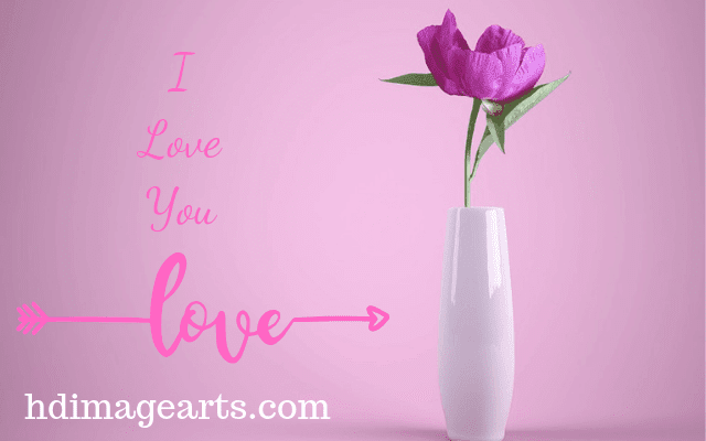 love-images-download-for-whatsapp-4