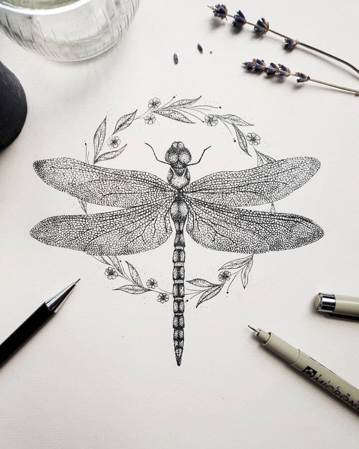 08-Dragonfly-Marina-Tim-www-designstack-co