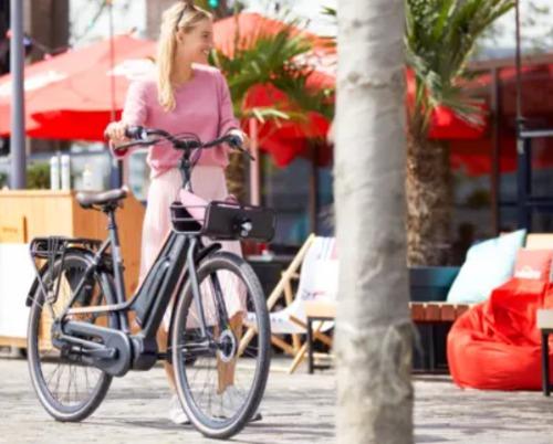 Gazelle CityGo e-bike