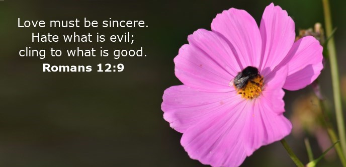 Love must be sincere. Hate what is evil; cling to what is good.