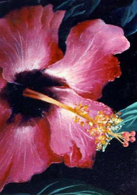 ~ Hibiscus Study ~   Oil on canvas 24 x 36, 1979   Collector not recorded. Timeless Expression by Maguire