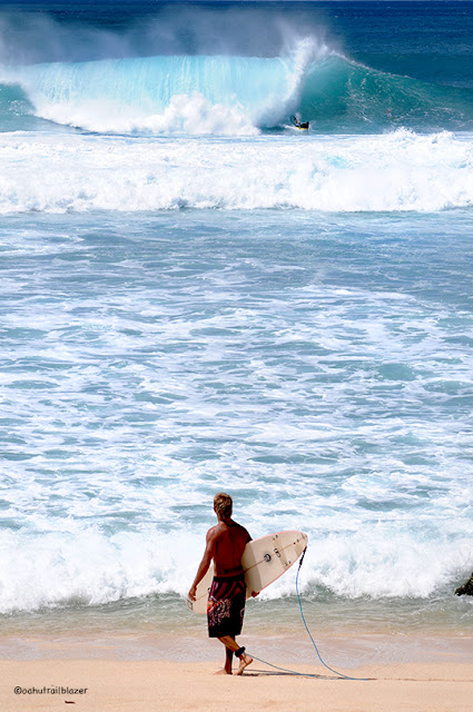 Everybody s gone surfin , at  Waimea Bay