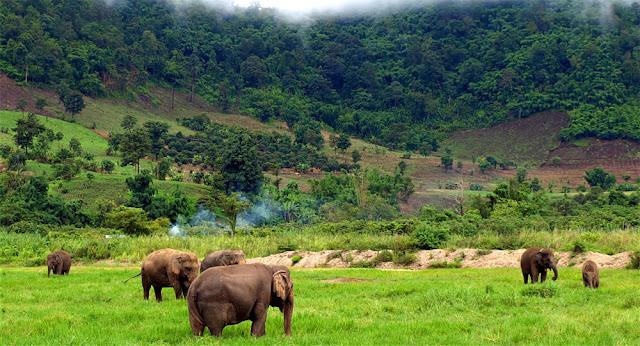 Honeymoon destinations cambodia 4