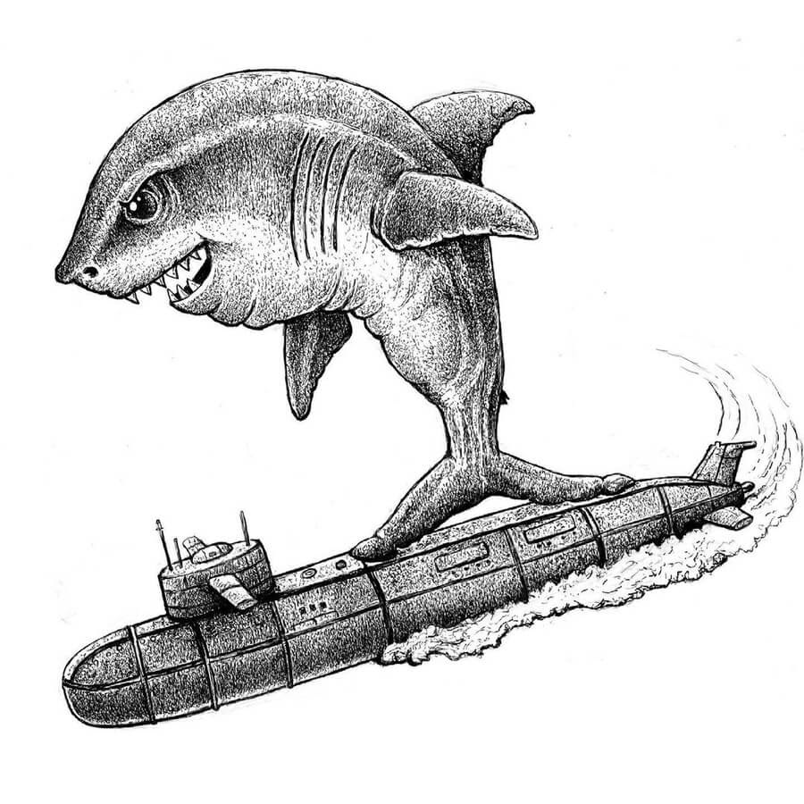 04-This-is-how-sharks-surf-Tim-Andraka-www-designstack-co