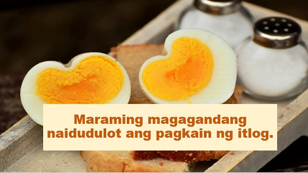 "Do you love eating eggs? If yes, then you are blessing your body with a lot of benefits.  Advertisement    According to Natural Food Series, eggs are one of ""nature's true superfoods"".    ""This nutritionally complete food comes with a complete list of exceptional health benefits,"" it was disclosed.    Here are some of the wonders that eggs can do to one's health:    1. Egg is a valuable source of choline; which is a macronutrient that is essential for several important physiological functions including neurological development, nerve function, muscle control and metabolism.     2. Egg protects the eyes from age-related degeneration. There are some nutrients that helps bring this degenerative process to a halt and two of those nutrients are lutein and zeaxanthin which are both found in egg yolks. Eating one or two a day will be of great help.    3. Studies showed that people who eat eggs for breakfast consume less calories during the day as they feel more satiated and have higher energy levels to sustain them throughout the day.  Ads     Ads  4. Most anti-cancer diet are rich in fruits, vegetables, and whole grains--but you can increase the effectiveness of your preventative diet by adding eggs on a regular basis. Case studies revealed that the choline found in egg yolks to be associated with a reduced overall risk of breast cancer.     5. Eating eggs consistently leads to elevated levels of HDL or the ""good"" cholesterol, which is linked to a lower risk of many diseases.    On the other hand, people must still be aware of the possible health risks that are associated with eating eggs.    According to Medical News Today, one must take note that:  Eating raw or undercooked eggs is not recommended. Bacteria can enter the egg through pores in the shells.  Eggs should be avoided if their shells are cracked. Eggs must be shunned if they are past expiration date. Watch this video for additional information about egg consumption:    This article was filed under Health, Health news, Healthy life news, Newshealth, Healthy Living, Health blogs, Health benefits, Food, Drinks, Natural, and Eggs."