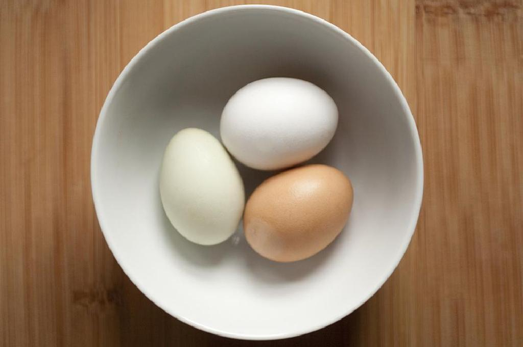 Are eggs dairy products