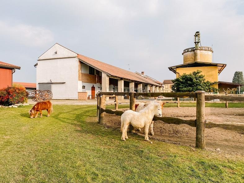 Cascina con animali in Lombardia