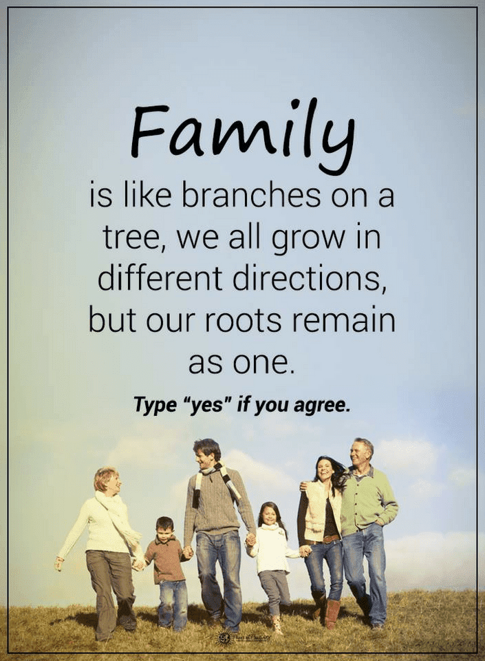 Quotes Family Is Like Branches On A Tree We All Grow In Different