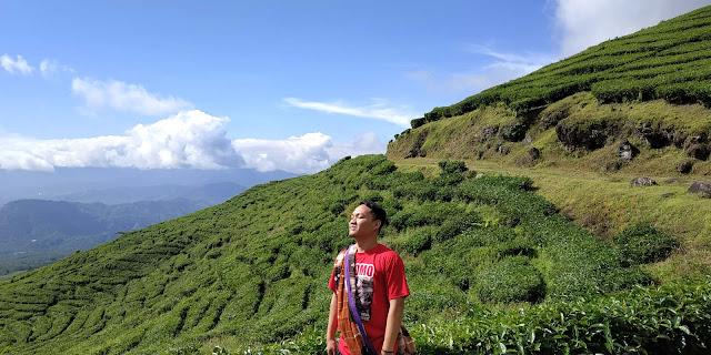 Wisata kebun teh gunung dempo pagar alam