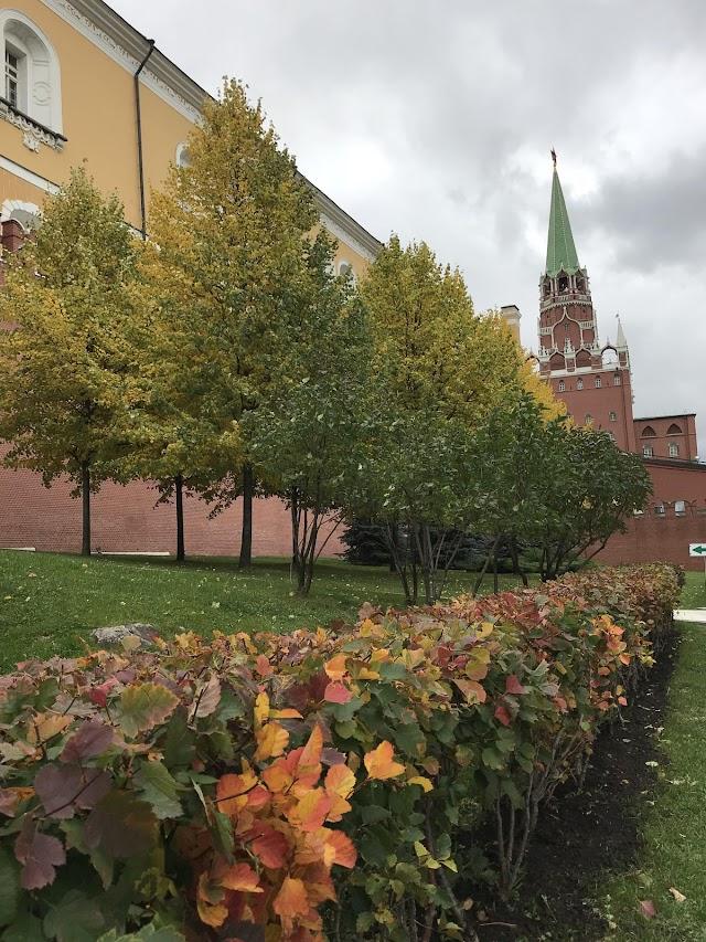 Autumn of Russia in magic light