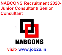 NABCONS Recruitment 2020, Junior Consultant, Senior Consultant