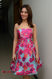 Actress Tamanna Latest Images in Floral Short Dress at Okkadochadu Movie Promotions  0048.JPG