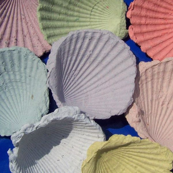scallop shells made of handmade paper