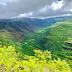Парк на Гавайях. Красивые виды каньона Ваймеа.