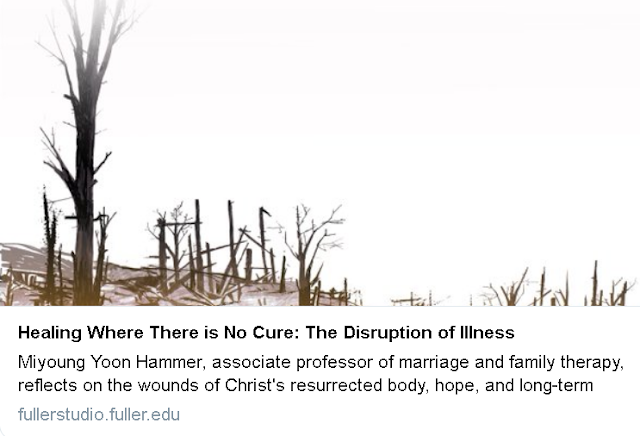 https://fullerstudio.fuller.edu/healing-where-there-is-no-cure-the-disruption-of-illness/