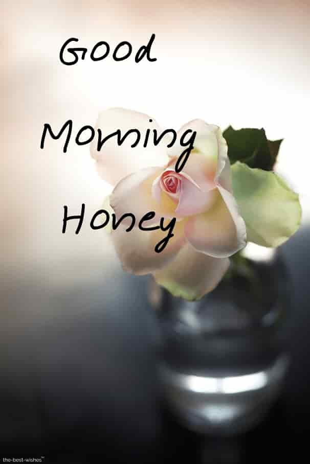 honey good morning images