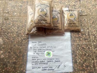 Benih padi yang dibeli    NUR KHAMID Pemalang, Jateng  (Sebelum packing karung ).
