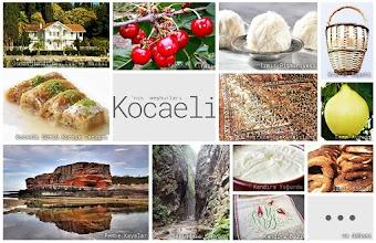 Kocaeli'nin meşhur şeylerini gösteren resimlerden oluşan kolaj