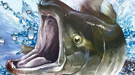Reel Fishing: Road Trip Adventure Review | Gameplay