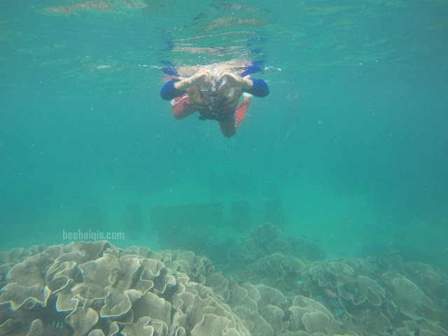 Menjelajahi bawah laut di Pulau Derawan
