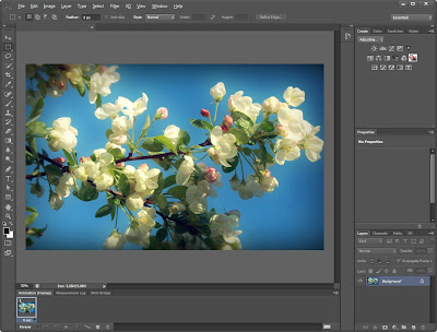 With photoshop crack cs6 version download adobe free full