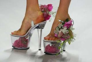 zapatillas o tacones exóticos