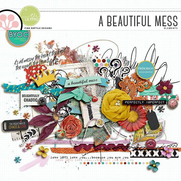 https://the-lilypad.com/store/A-Beautiful-Mess-Elements.html