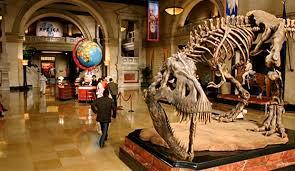 Müze Nedir? Müzelerin Amacı, Türleri ve Kültürel Önemi Nelerdir?