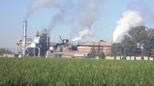 La CTAA reclamó la intervención del Gobierno ante crítica situación de los azucareros en Salta