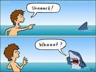 Funny Survivor Cartoon - Shark!
